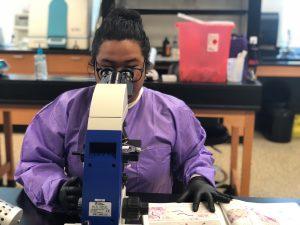 Christine Dela Cruz looks through a microscope at TCC's clinical laboratory.