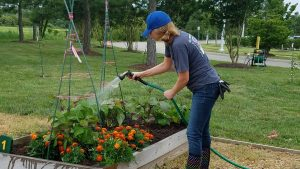 Christy Carroll-Hendricks tends plants at the Virginia Beach Community Garden