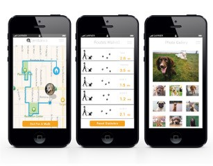 Woof Weather app, designed by TCC alumna Grace Richardson