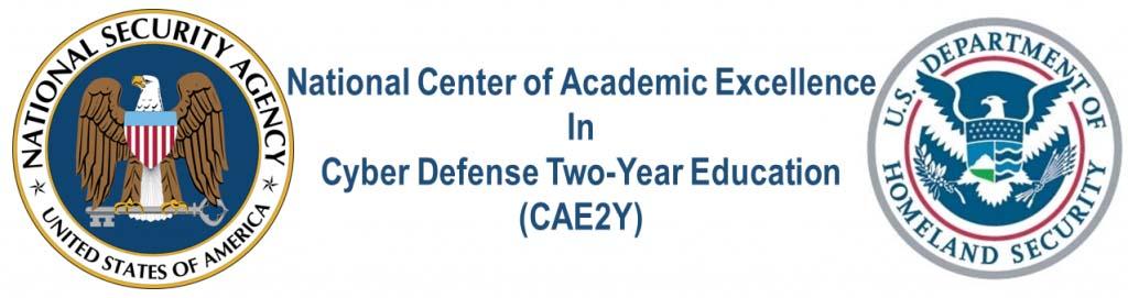 CAE2Y banner