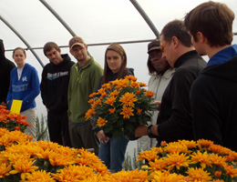 Horticulture students look at a pot of mums with their instructor