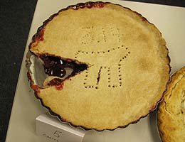 Best use of Pi Theme: Professor Julia Arnold