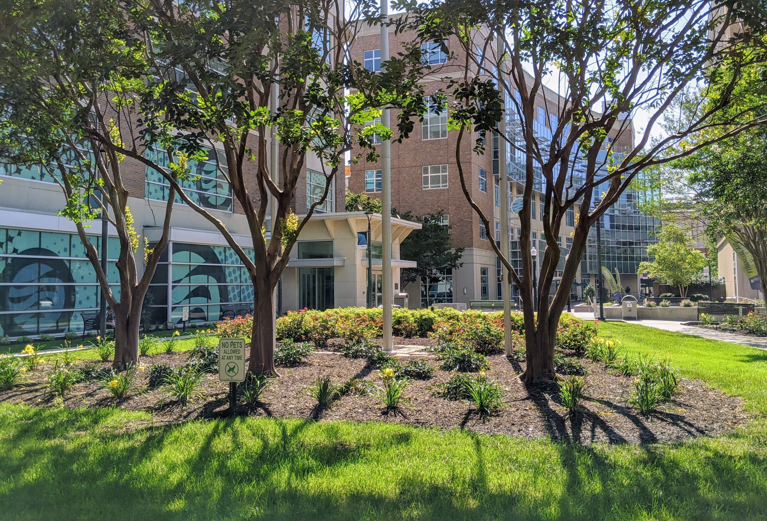 TCC's Norfolk Campus.